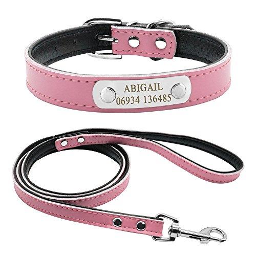 Didog - Set di collare e guinzaglio per cani in morbida pelle imbottita con targhetta personalizzata per cani di piccola taglia e media, colore rosa, taglia M