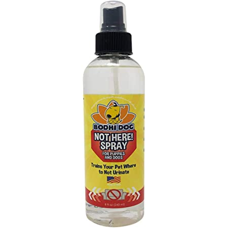 Bodhi Dog Not Here! Spray   Trains Your Pet Where Not to Urinate   Repellent & Training Corrector for Puppies & Dogs   for Indoor & Outdoor Use   No More Marking   Made in The USA
