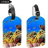 TIZORAX Gepäckanhänger Fische Koralle 3D Unterwasserwelt Leder Reise Koffer Etiketten 2 Packungen