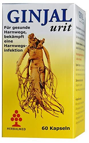 Extrakte aus Cranberry und 4 Kräutern, 60 Kapseln - beugen einer Harnwegsinfektion vor, bekämpfen eine bestehende, reinigen den Körper, mit Cranberry, Rosmarin, Holunderbeeren, Gänsedistel, Ginseng