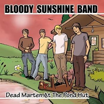 Dead Marten At the Pond Hut