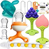 BIGSPINACH Baby Fruit Feeder Pacifier Teething Toys Set for Babies 3-24 Month/Fresh Food Feeder - 9pk