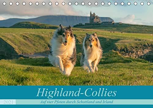 Highland-Collies - Auf vier Pfoten durch Schottland und Irland (Tischkalender 2021 DIN A5 quer)