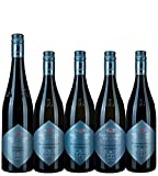 Probierpaket VDP.GROSSE GEWÄCHSE, je eine Flasche der VDP.GROSSEN GEWÄCHSE, Staatsweingut Freiburg (5x0,75l)