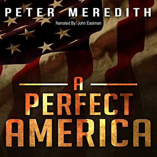 A Perfect America audiobook cover art