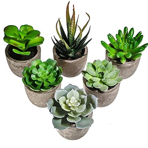 6 Stücke Künstliche Sukkulenten Pflanzen mit Töpfen Mini Kunststoff Grünes Aloe Pflanzen Ideal für Haus Büro Tische Balkon Wohnzimmer Schlafzimmer