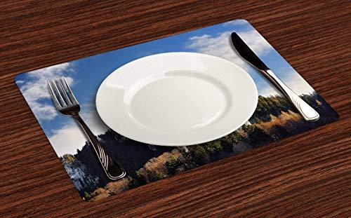 Juego de 4 salvamanteles bávaros, Royal Castle Neuschwanstein y alrededores en Alemania, paisajes montañosos, resistentes al calor, lavables para mesa de comedor, multicolor