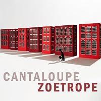 Zoetrope [12 inch Analog]