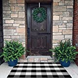 Purcoton Buffalo Plaid Rug, Buffalo Check Rug (27.5 x 43 Inches), Hand-Woven Reversible Machine-Washable Outdoor Front Door Rugs for Layered Door Mats/Porch/Kitchen/Bathroom/Laundry