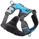 Red Dingo Padded Dog Harness, Medium Breeds, Adjustable Fit, Size: Medium, Turquoise, M