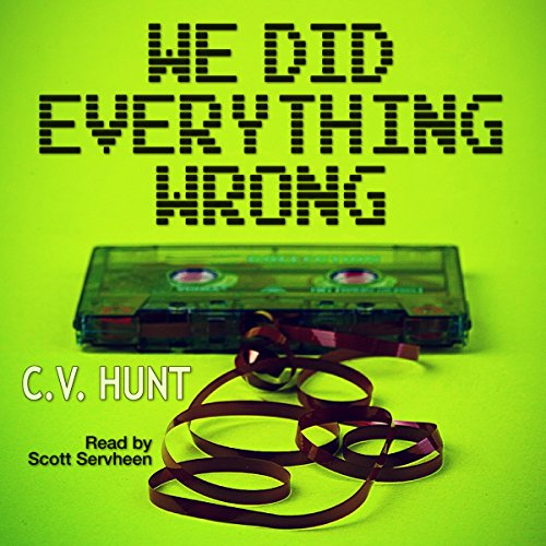 We Did Everything Wrong audiobook cover art