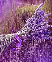 紫の花300ピースジグソーパズル 木製ジグソー脳チャレンジ