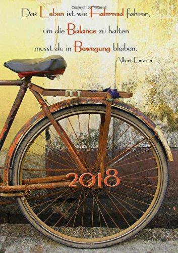"""dicker Tagebuch Kalender 2018 \""""Das Leben ist wie Fahrrad fahren, um die Balance zu halten musst …\"""": (Albert Einstein) - DIN A4 - 1 Tag pro Seite"""