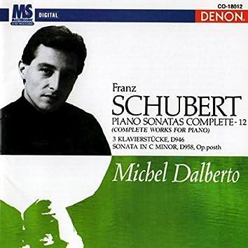 Schubert: Piano Sonatas Complete, Vol. 12 (Complete Works for Piano)