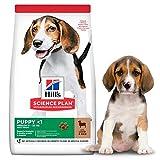 Hill's Science Plan Puppy Medium Dry Dog Food Lamb Flavour 2.5kg