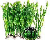 Planta Acuática Artificial De Plástico Acuario 10 Piezas Plantas De Decoración para Acuarios Plantas De Pecera Grande Plantas De Plastico Plantas Acuáticas Artificiales Plástico para Peceras Acuarios