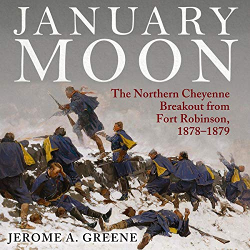 January Moon  By  cover art