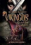 Vikingos: Hijos de la furia y la pasión: Novela de romance histórico y de Vikingos. (Señores del Norte nº 1)
