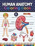 Human Anatomy Coloring Book For Kids: An Entertaining And Instructive Guide To The Human Body - Bones, Muscles, Blood, Nerves And How They Work. ... High School & College Level Students.