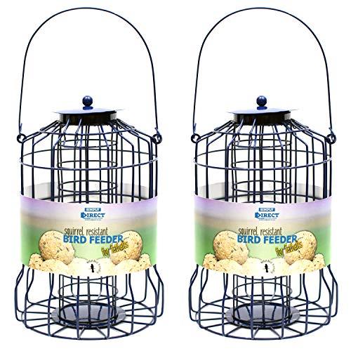 simply direct 2 x Alimentador Bola de Grasa Resistente a Las Ardillas para Aves Silvestres de Jardín
