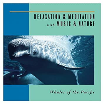 Whales Of The Pacific
