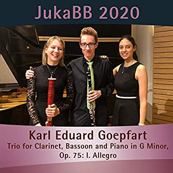 Trio for Clarinet, Bassoon and Piano in G Minor, Op. 75: I. Allegro