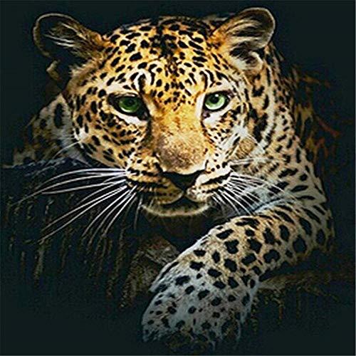 YGYGYG Rompecabezas de 1000 Piezas Leopardo con Ojos Verdes Juegos Divertidos Exploración educativa Creatividad y resolución de Problemas 75 * 50cm