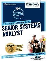 Senior Systems Analyst (Career Examination)