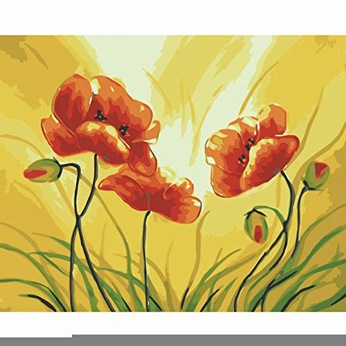 MNDDBB Pintura Al Óleo Pintura por Número Kit Hogar Pared Arte Imagen para Lienzo De Pintura Viva-C