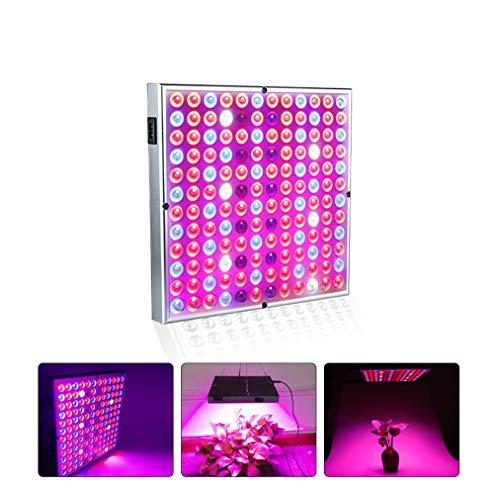 N/D 300W LED Grow Light Vollspektrum Grow Lampe für Gewächshaus Hydroponic Zimmerpflanzen Gemüse und Blume A2