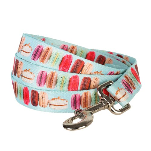Blueberry Pet Durable The Ultimate Macaroon Cake with Spring Pastel Hues Dog Leash 5 ft x 3/8