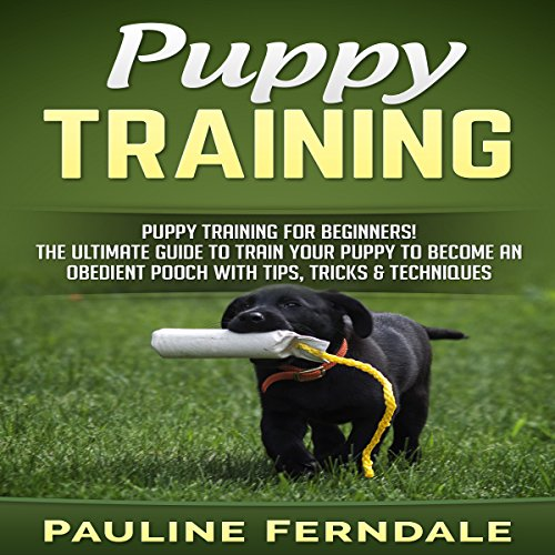 Puppy Training for Beginners! cover art