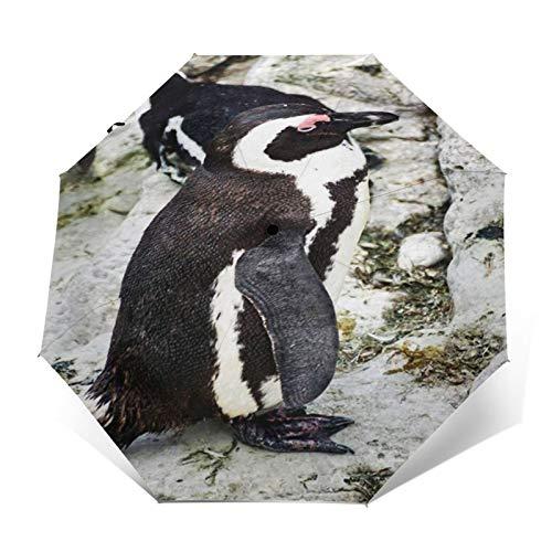 Paraguas Plegable Automático Impermeable Colonia de pingüinos 40, Paraguas De Viaje Compacto A Prueba De Viento, Folding Umbrella, Dosel Reforzado, Mango Ergonómico
