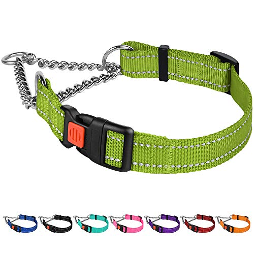 CollarDirect Reflective Dog Collar Martingale Collars Side Release Buckle Chain Training Adjustable Pet Choke Collars (M, Neck Size 14