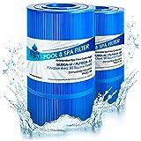 Premium Antimicrobial Replacement Swimming Pool & Spa Filter Cartridge For Hayward C900, CX900RE, PA90, Unicel C-8409, Filbur FC-1292, Sta-Rite PXC95, Clearwater II ProClean 100, Waterway PCCF100, 2PK