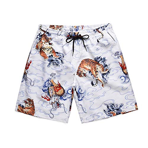 Jeff-chy Heren Mesh voering Beach Swim, zomer Sciolto Quick-Asciugatura Surf Creative Pants Dragon Tiger Print Beach grote broek mannen