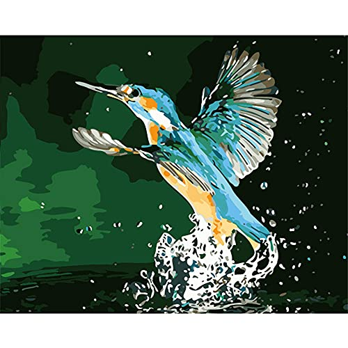 Yanshen Kit de Pintura Digital, Pintura óleo Digital de Bricolaje con Pintura acrílicay Pincel para adultosy niños, Regalo Artesanal sin Marco de 40x50 cm,Gotas de Agua, pájaro Azul