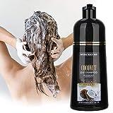 Shampoo per capelli neri, 500ml Shampoo allo zenzero al cocco Shampoo nutriente colorante per capelli neri veloci