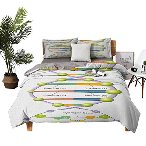 Educational 3-Piece Set of 100% Washed Microfiber Colorful Structure of DNA Genetic Code Amino Acids Nucleotides Scientific Study Super Soft Anti-Wrinkle Fade Breathable California King