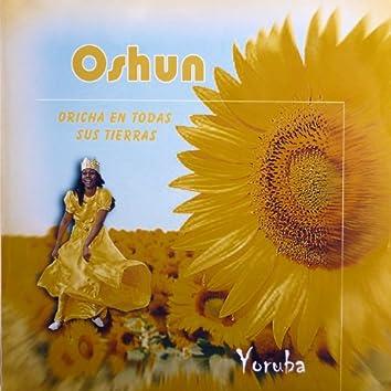 Oshun (Oricha en todas las tierras)