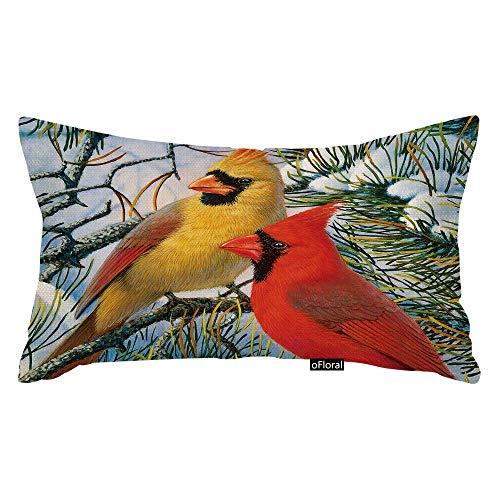 Funny Red Cardinal Bird Art - Funda de almohada suave para decoración de sofá, cama y sofá