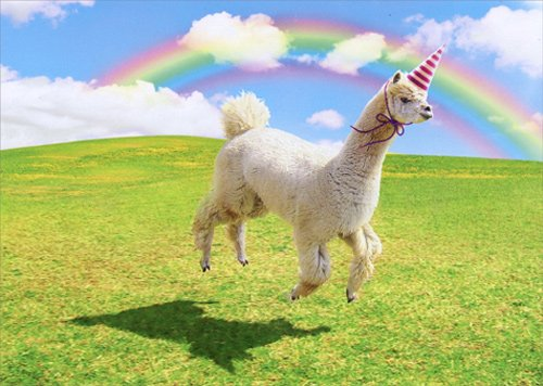 Alpaca Unicorn - Avanti Funny Birthday Card