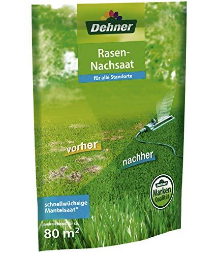 Dehner Rasen-Nachsaat, 1.1 kg, für ca. 80 qm