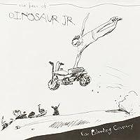 Ear-Bleeding Country: The Best of Dinosaur Jr