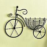 SUHETI Interiores y Exteriores Maceta Colgante Soportes de Plantas, Forma la Bicicleta Soporte Flor Pared, para Casa Jardin Sala Estar,Negro
