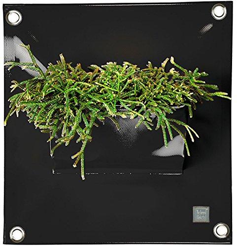 The Green Poche Le Peva1 40 x 50 cm cm Noir