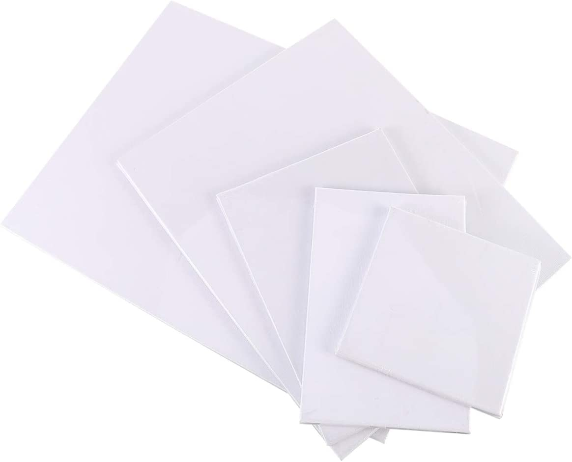 TomaiBaby 10pcs Paint Canvas Panels Ranking TOP1 4X4 9X12 In Direct store 5X7 4X6 8X10