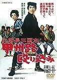 次郎長三国志 甲州路殴り込み [DVD] image