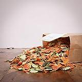 Hitzegrad Barf Premium-Gemüse Mix als Menü-Zusatz für Hunde - 2000g