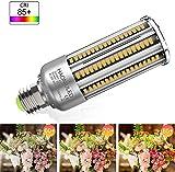 Zoom IMG-2 lampadina led e27 35w luce
